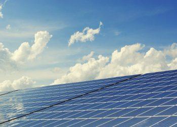 Solarenergie im Gewächshaus richtig nutzen (Anleitung & Tipps)